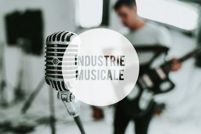Quid du statut d'intermittent du spectacle pour les professionnels de la musique
